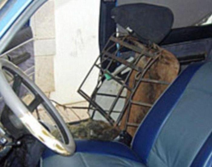 Перевозка нелегала через испанскую границу (2 фото)