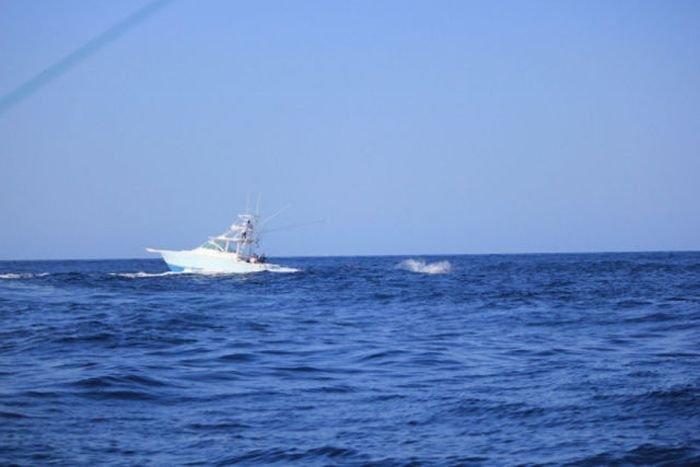 Опасная рыбалка (7 фото)