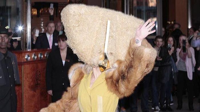 Леди Гага (3 фото)