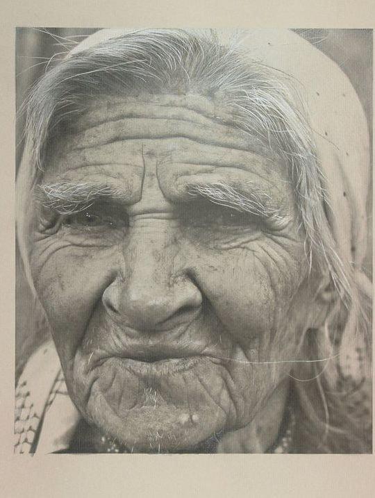 Отличные рисунки карандашом (26 фото)