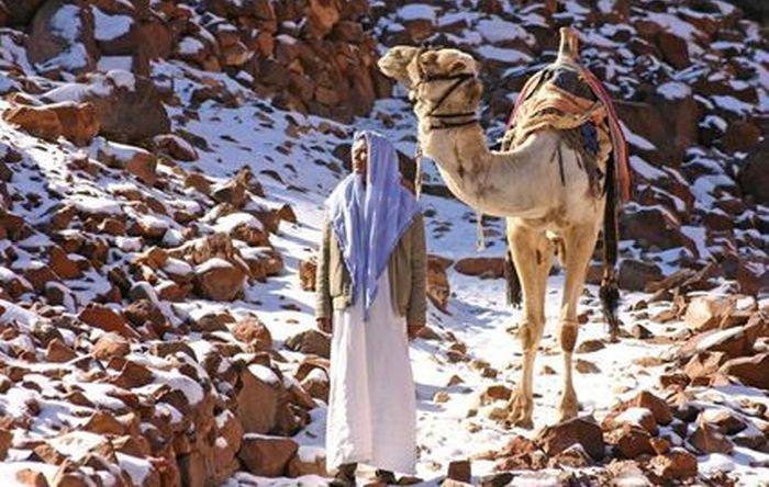 В Египте выпал снег (27 фото)