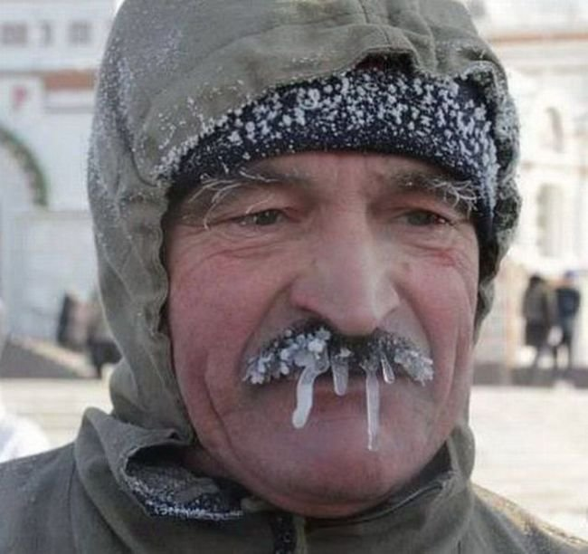 Зима пришла (58 фото)