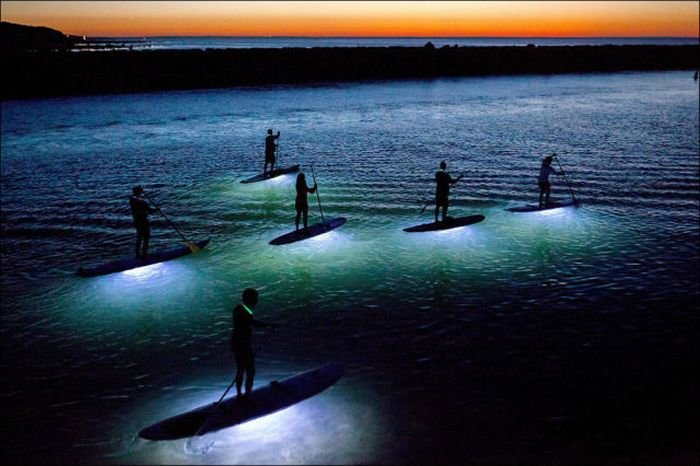 Шикарные снимки от National Geographic (32 фото)