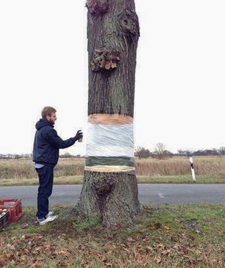 Классный розыгрыш с деревом (3 фото)
