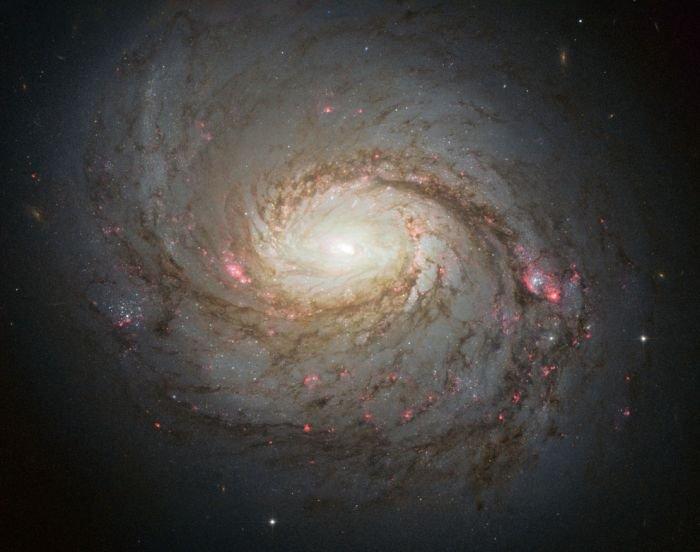 Красоты вселенной (43 фото)