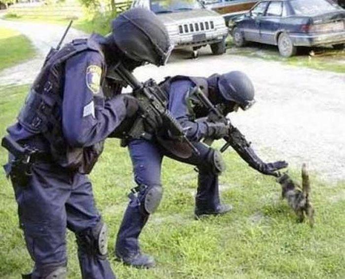 Загонные полицейские (29 фото)