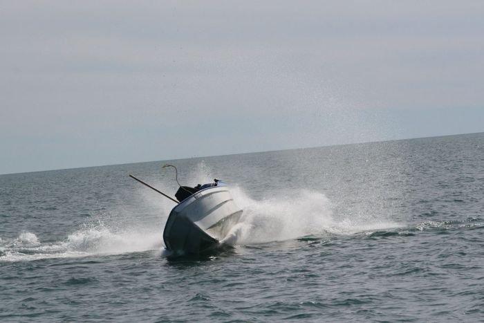 Горбатый кит атаковал лодку (7 фото)