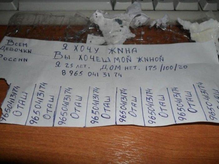 Загонные объявления и надписи (37 фото)