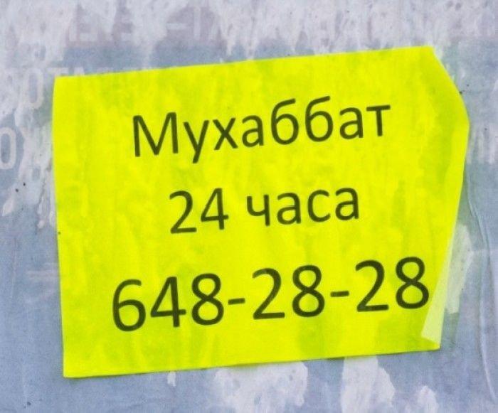 Загонные объявления и надписи (55 фото)