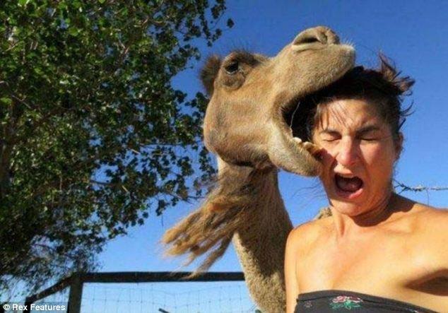 Неудачные фотографии с животными (8 фото)