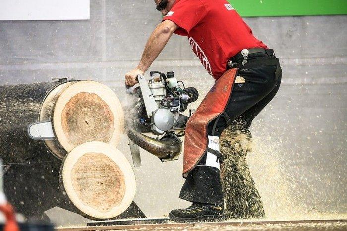 Соревнования лесорубов (15 фото)