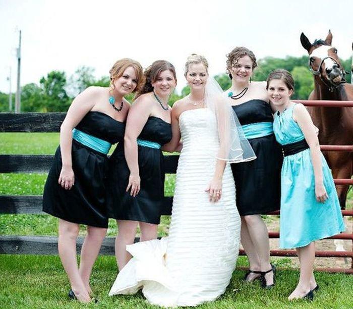 Загонные свадебные фотографии (43 фото)