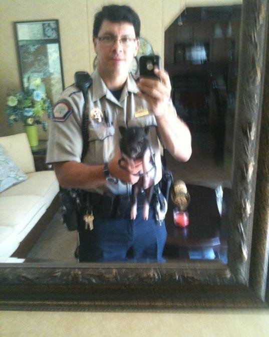 Самострелы полицейских (22 фото)