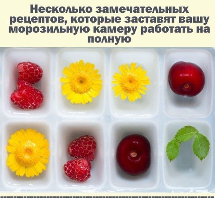 Рецепты в форме для льда (12 фото)