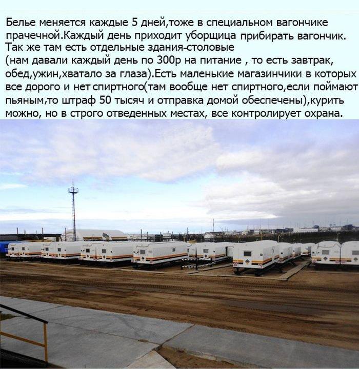 Про работу на севере (23 фото)