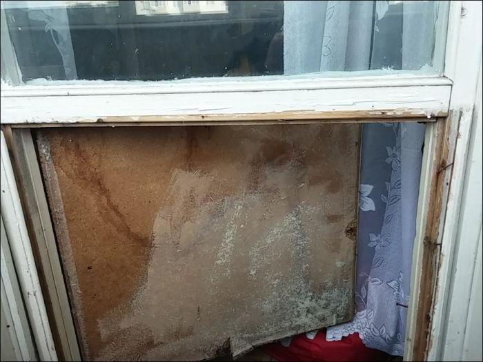 Кот закрыл хозяина на балконе (10 фото)
