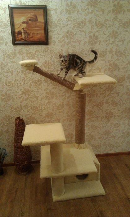 Домик для кота своими руками (44 фото)