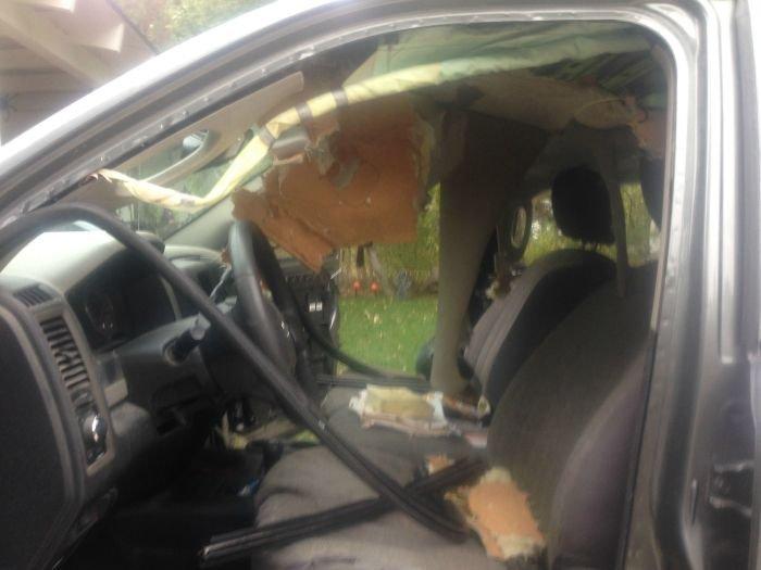 Машина после ночевки медведей (3 фото)