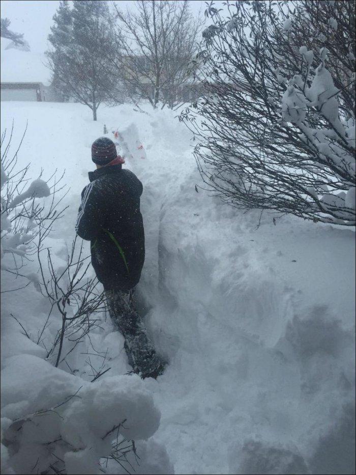 США завалило снегом (23 фото)
