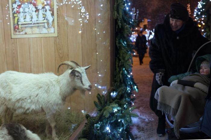 Новогодняя иллюминация в Москве (31 фото)