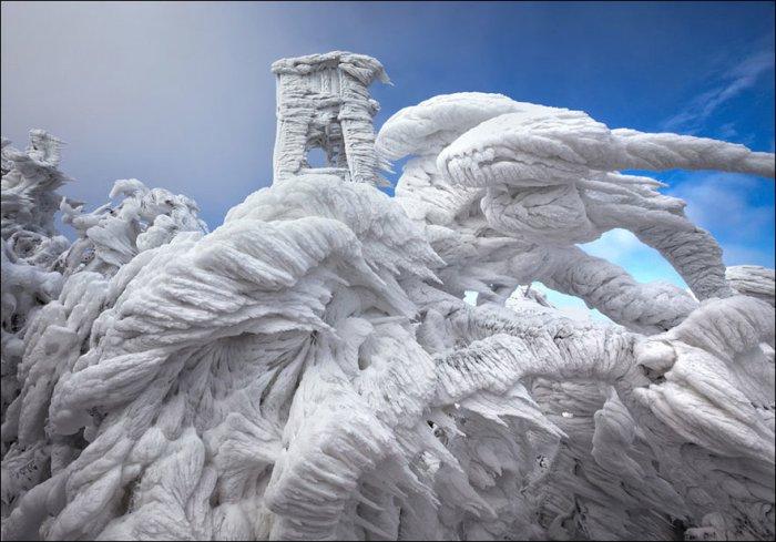 Снежное царство (9 фото)