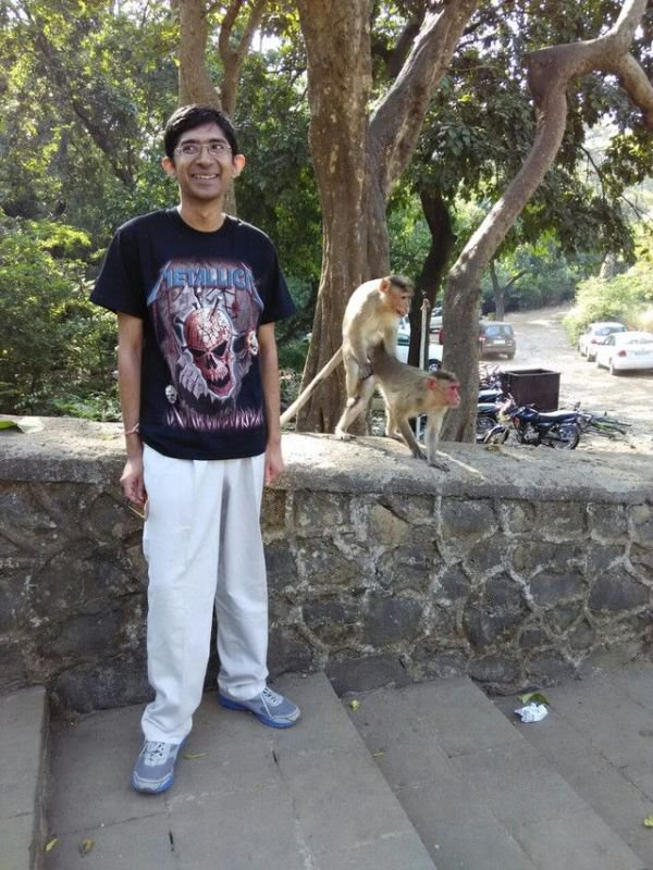 Фото с обезьянами (4 фото)