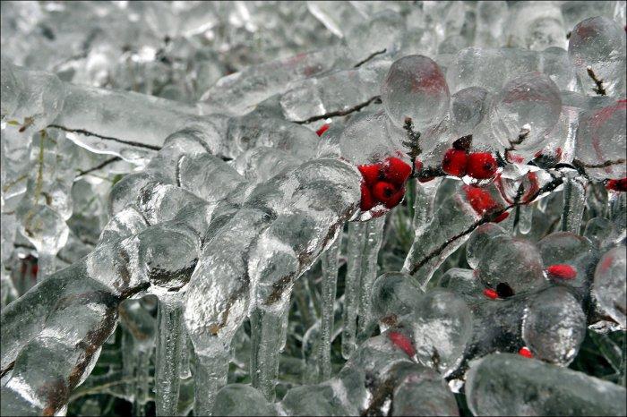 Ледяной дождь в Европе (18 фото)