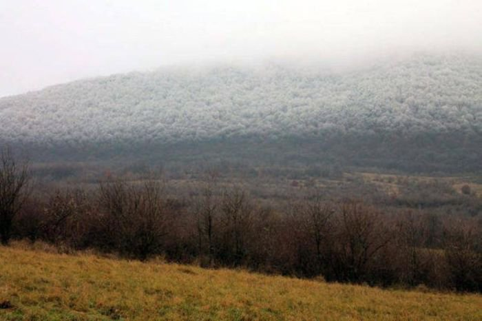 Замораживающий туман (6 фото)
