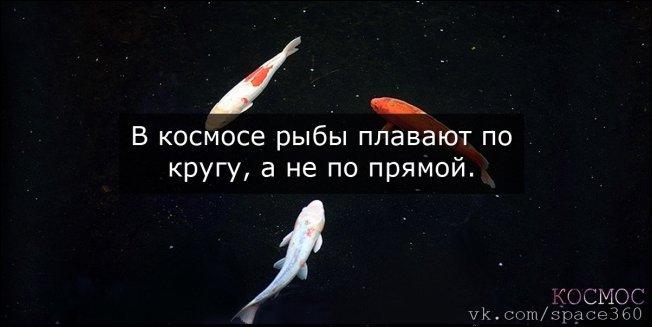 Факты о космосе (24 фото)