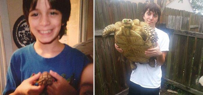 Животные раньше и сейчас (22 фото)
