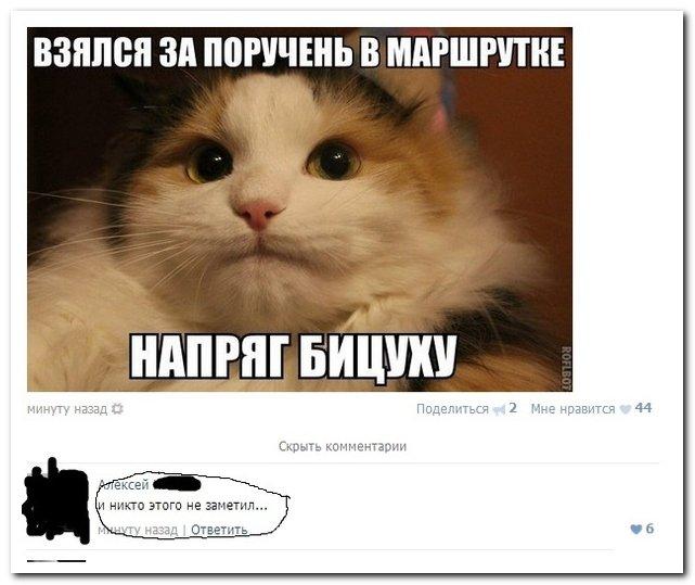 Скриншоты из социальных сетей. Часть 48 (37 фото)