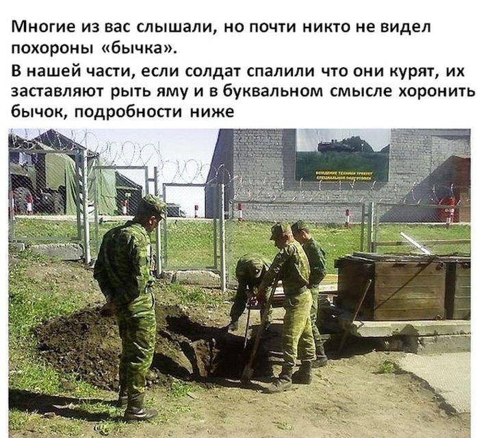 Похороны бычка в армии (8 фото)