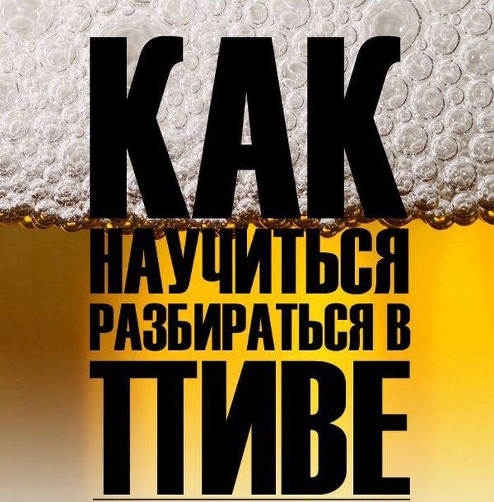 Как научиться разбираться в пиве (17 фото)