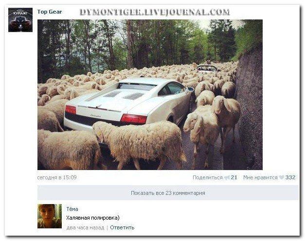 Скриншоты из социальных сетей. Часть 59 (36 фото)