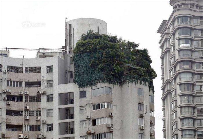 Китаец пристроил два этажа к своей квартире (4 фото)