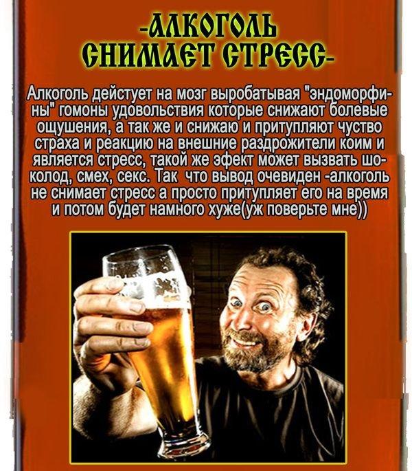 Мифы об алкогольных напитках (11 фото)
