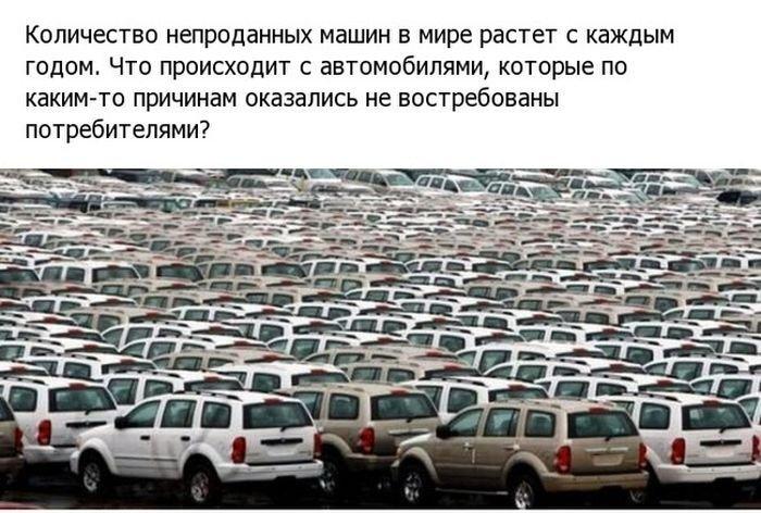 Где хранятся непроданные автомобили (18 фото)