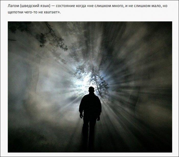 Редкие и необычные слова (25 фото)