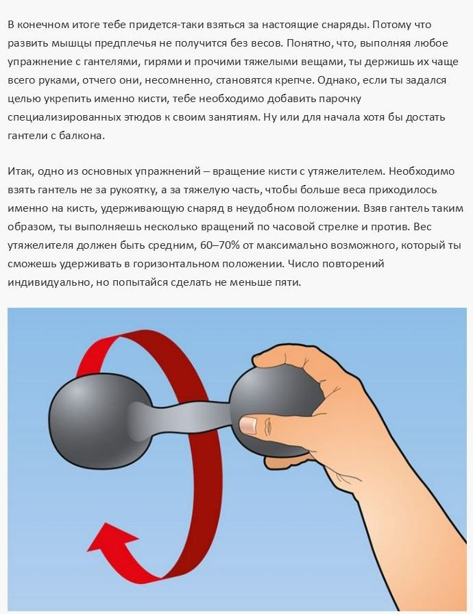 Как натренировать мышцы рук (12 фото)