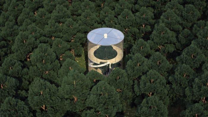 Стеклянный дом в лесу (6 фото)