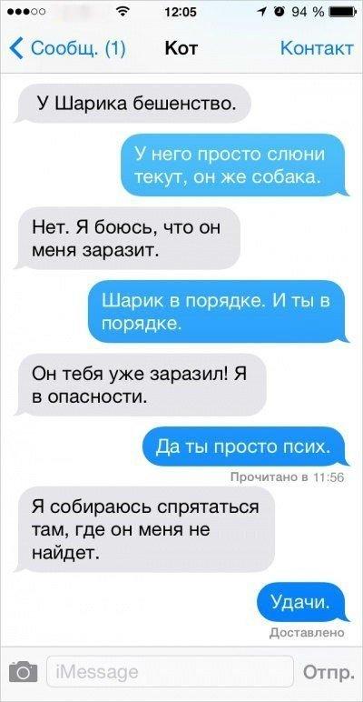 Коты пишут СМС (10 фото)