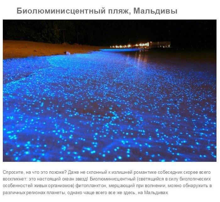 Необычные пляжи мира (25 фото)