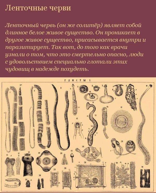 Медицина в средние века (16 фото)