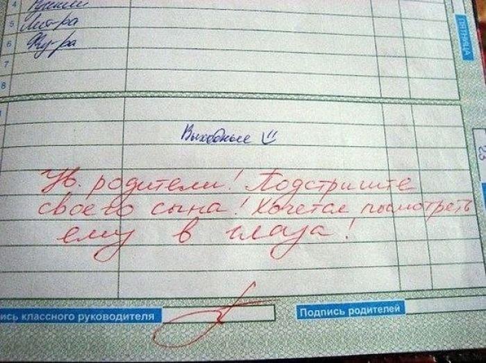 Записи в дневниках (21 фото)