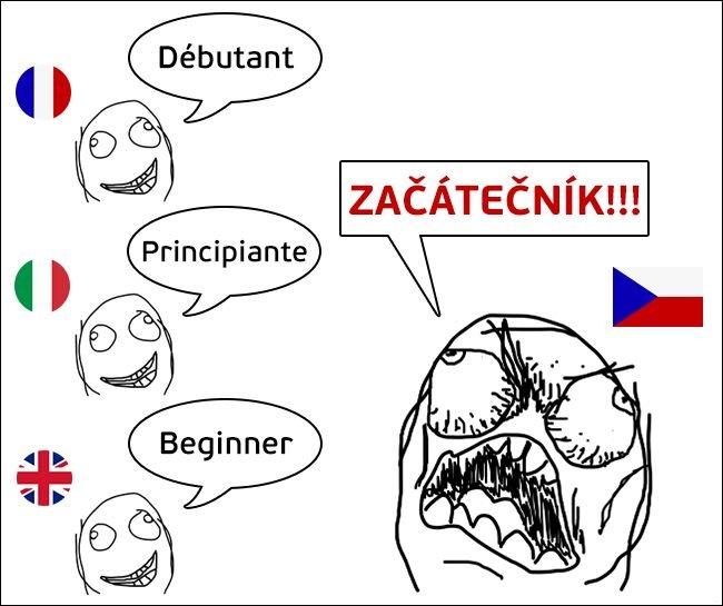 Загонные слова в чешском языке (10 фото)