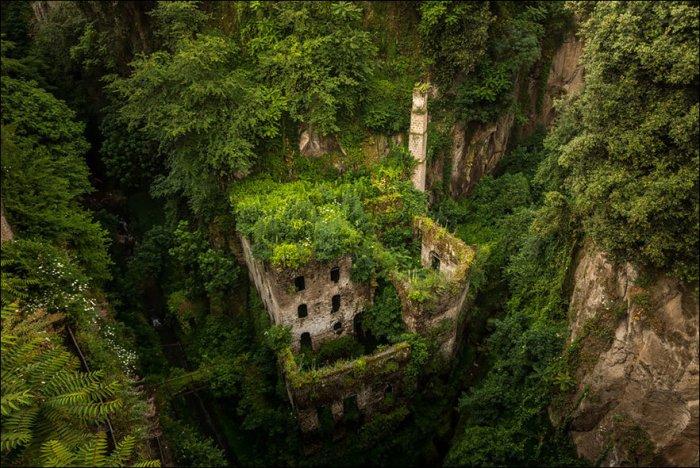 Природа против цивилизации (21 фото)