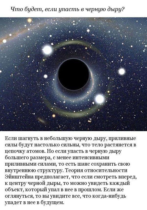 Ответы на научные вопросы (10 фото)