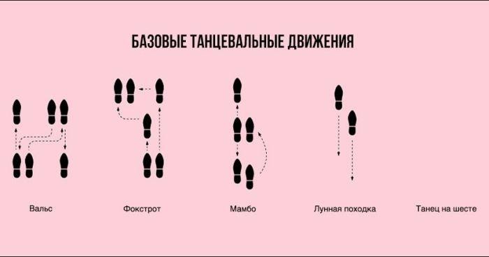Загонные инфографики (25 фото)