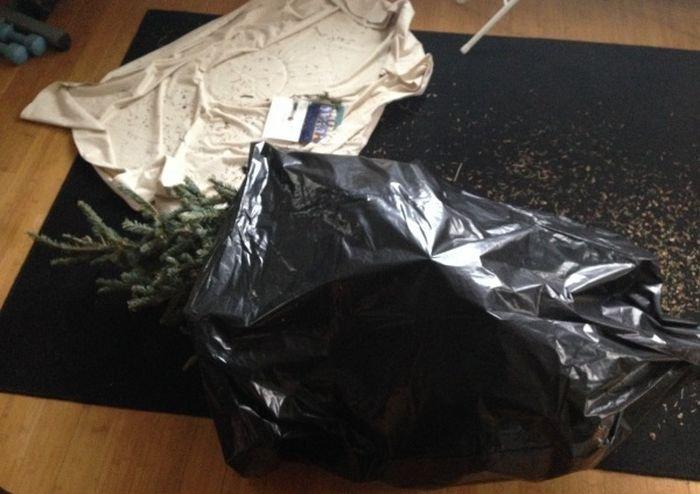 Как правильно выбросить елку (3 фото)