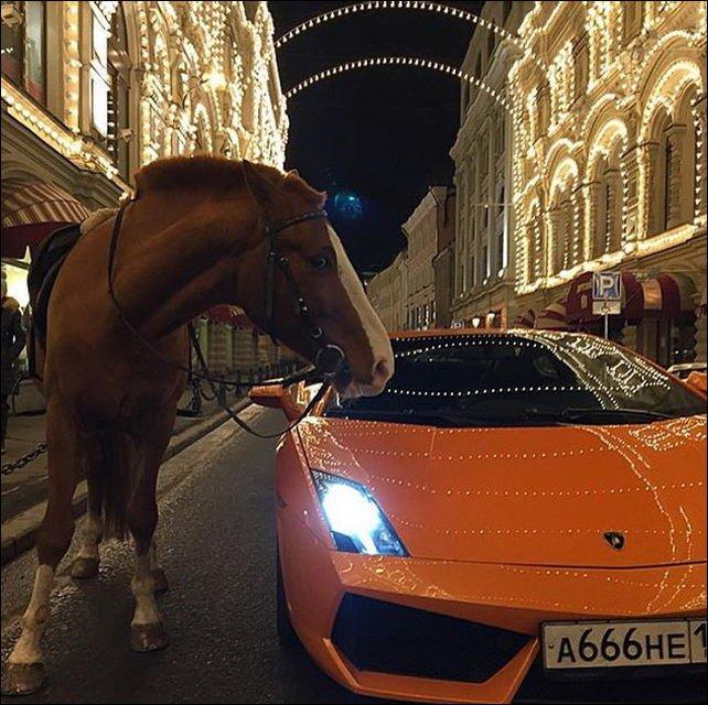 Жизнь российской золотой молодежи (32 фото)